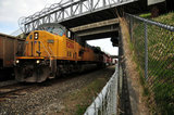 BURLINGTON NORTHERN TRACKS