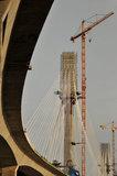 PORT MANN BRIDGE FRASER RIVER