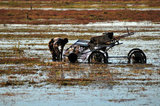 05 October 2012 - A worker cleans debris from a harvesting machine in a flooded field at a farm owned by Richberry Group of Companies, reportedly the largest grower in Canada, in Richmond, B.C., Canada. Credit: Adrian Brown - N49Photo.