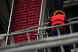 22 October 2012 - A worker monitors machinery near a conveyor system at the brand new, state-of-the-art Ocean Spray of Canada Ltd., Richmond Receiving Station, in Richmond, B.C., Canada. Credit: Adrian Brown - N49Photo.