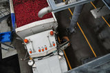 22 October 2012 - A truck driver exits his cab after parking his load of cranberries in an unloading area, at the brand new, state-of-the-art Ocean Spray of Canada Ltd., Richmond Receiving Station, in Richmond, B.C., Canada. Credit: Adrian Brown - N49Photo.