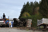 05 November 2012 - The driver (left) of an overturned truck on Highway 99, stands beside the scene of the accident, in Surrey, B.C., Canada. While an investigation will take place, it is believed that the right front tire of the truck blew out, causing the truck to veer off the shoulder, rolling onto its side in a grassy area beside the highway. The driver was unhurt at the scene. Credit: Adrian Brown - N49Photo.